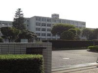 和光国際高等学校