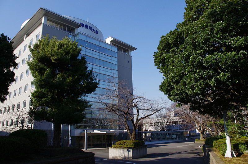 ランク 神奈川 大学