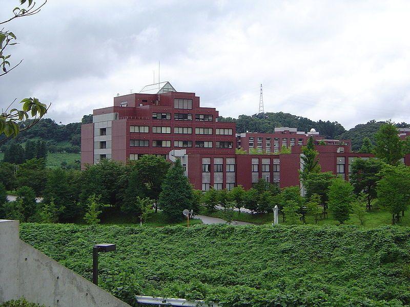 金沢 大学 薬学部