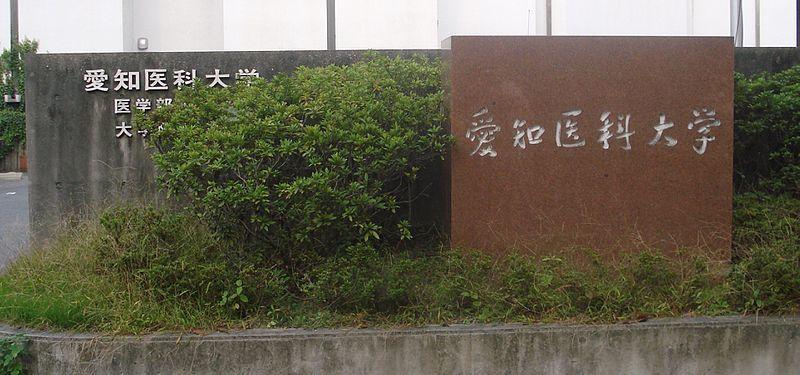偏差 値 医科 大学 兵庫