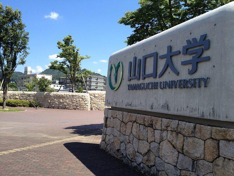 徳山 大学 偏差 値