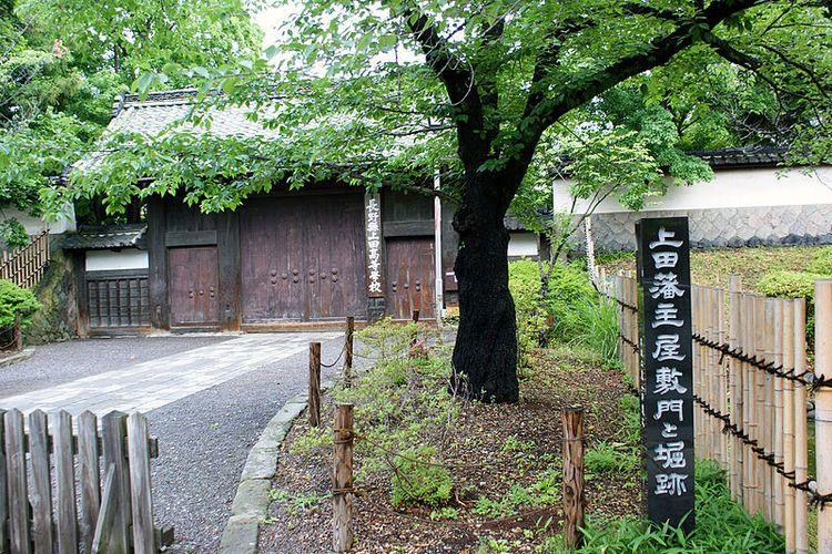 長野 県 高校 偏差 値