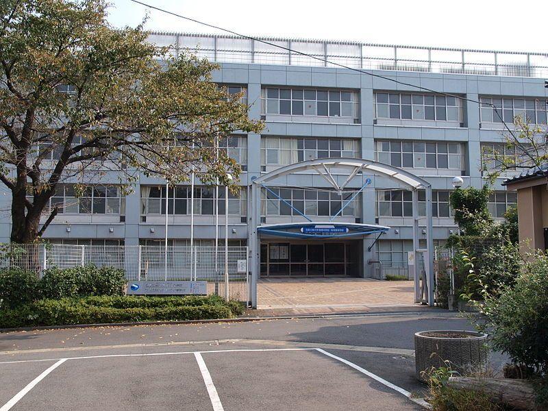 偏差 日本 値 大学 工業